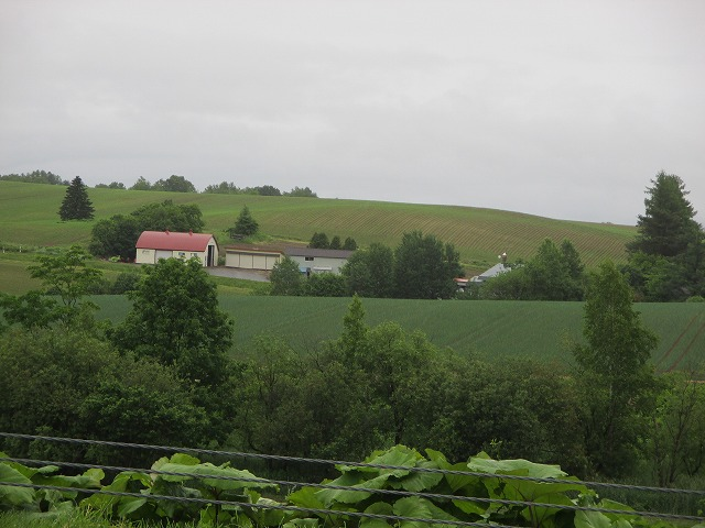 丘の中の家