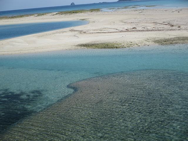 透明度が高い海