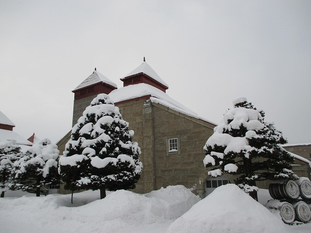 雪が積もっている建物と木