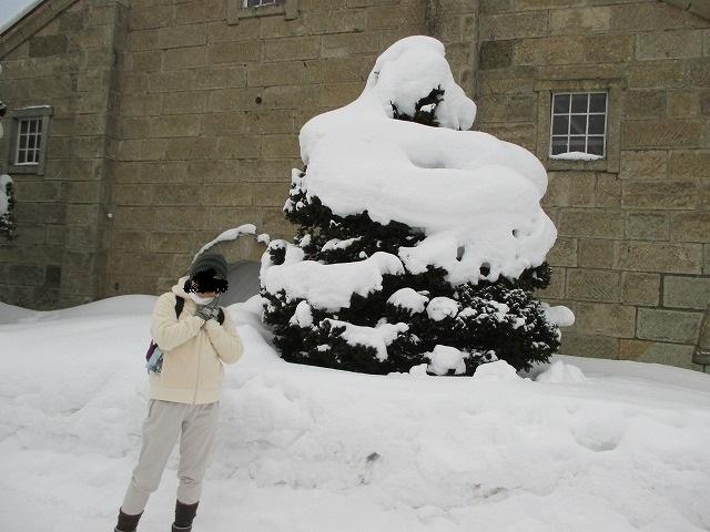 雪が積もったソフトクリームみたいな木
