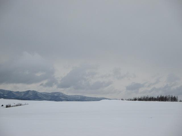 遠くに木が見える雪の道
