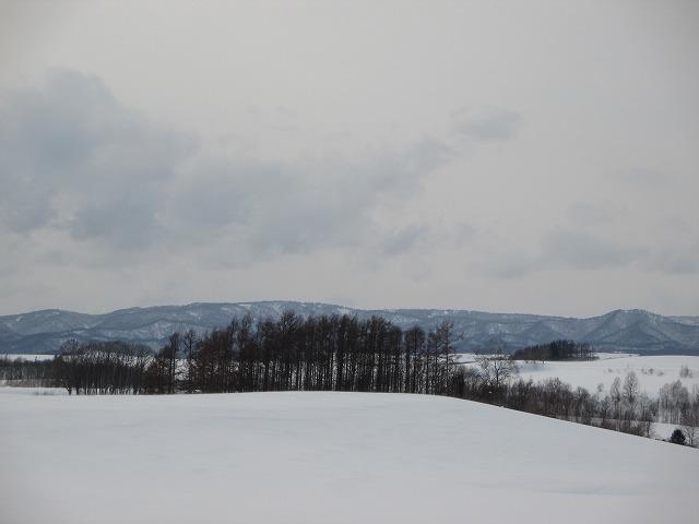 遠くに山が見える雪道