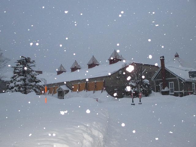 雪が降ってきて反射している