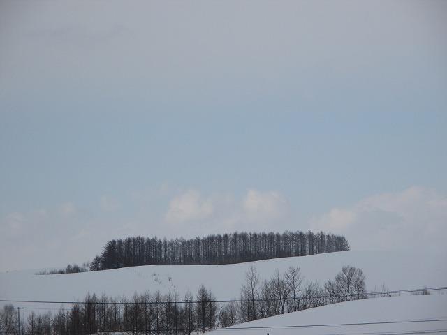 丘の雪景色
