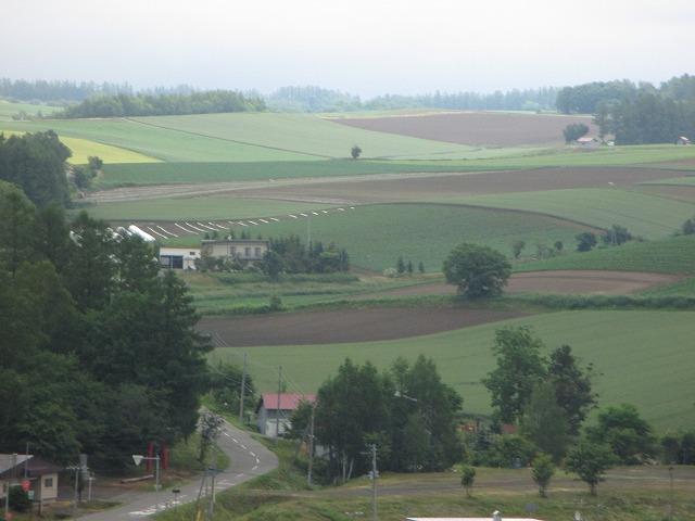 パッチワークのような丘の風景