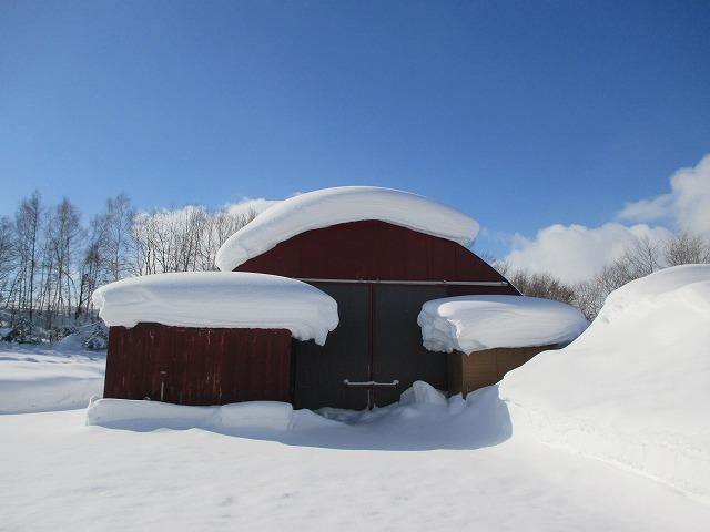 屋根に雪が積もった倉庫