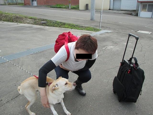 犬とたわむれる女性