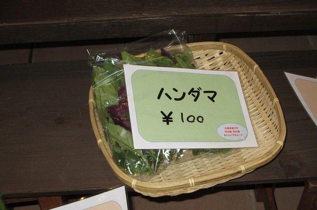 ハンダマという野菜