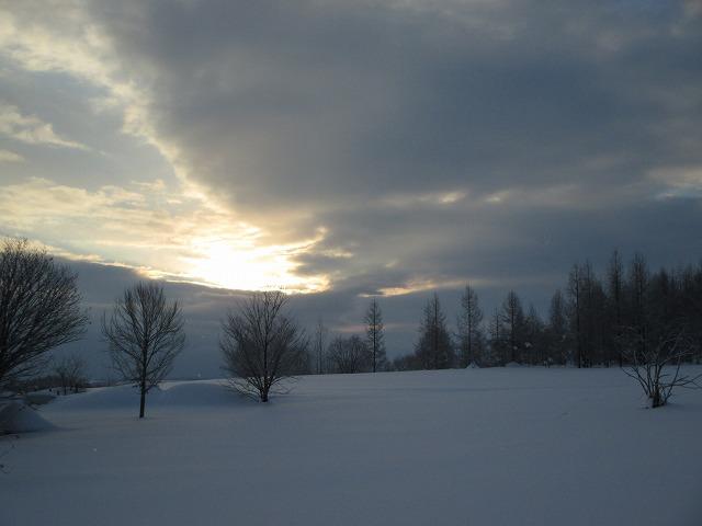 空と木と雪