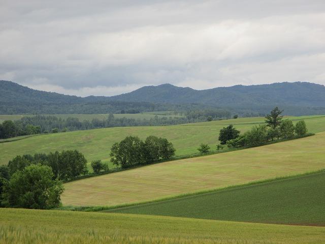 なだらかな丘の風景