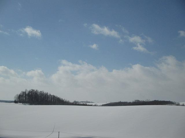 真っ白な雪原