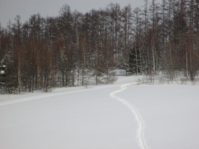雪の中にスノーシューの足跡