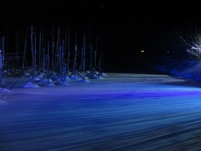 青と紫のグラデーションのライトアップ