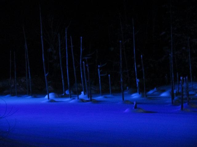 深い青のライトアップ