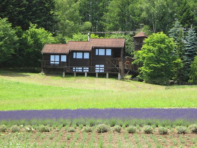 道端に咲くラベンダーと家