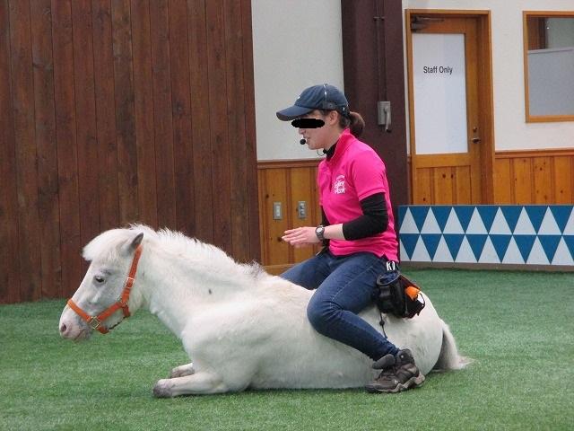 ポニーの背中に乗る飼育員の女性