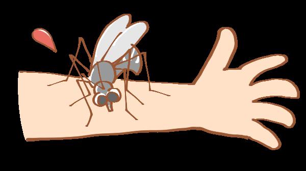 蚊が手を刺しているイラスト