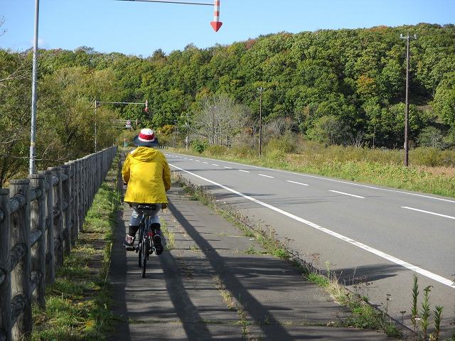 自転車に乗る女性の後ろ姿
