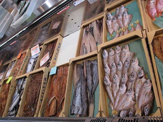 たくさんの魚のひもの