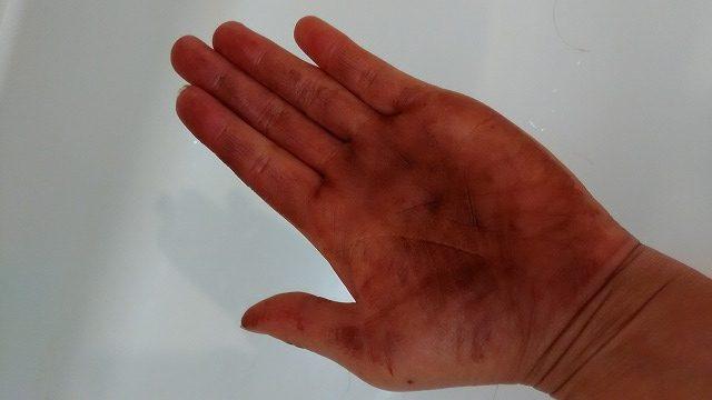 手のひらについたルプルプ
