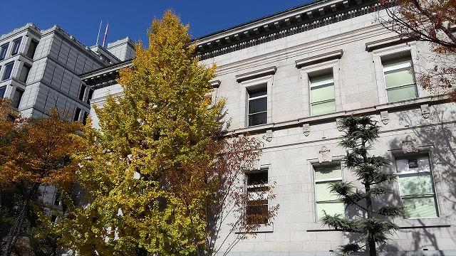 黄色に色づいた木