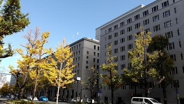 日本生命ビルといちょう並木