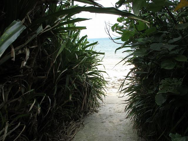 海岸への入口