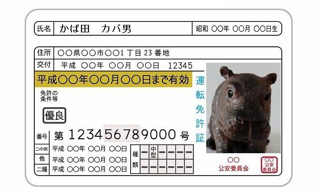 かば田カバ男免許証