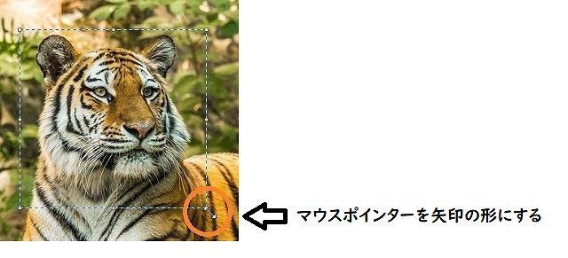 マウスポインターを矢印の形にする