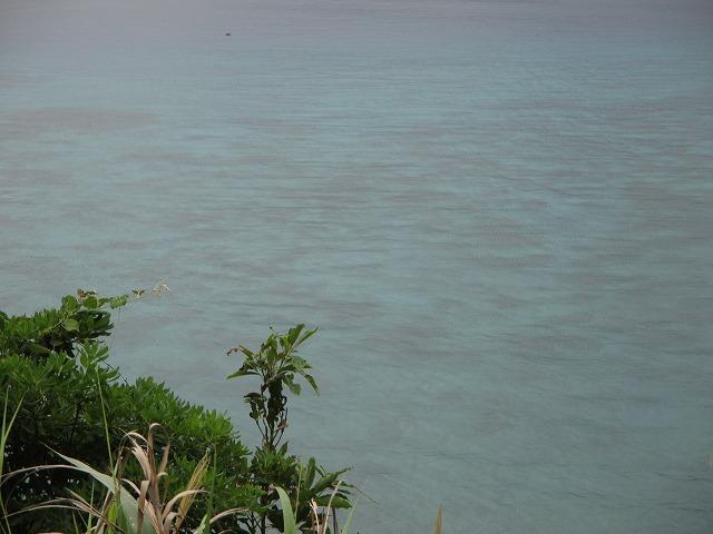 高台からみた海