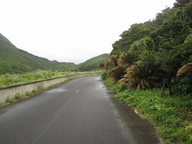 ホノホシ海岸への一本道
