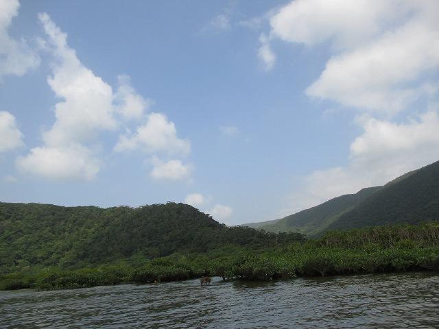 青空と山と川