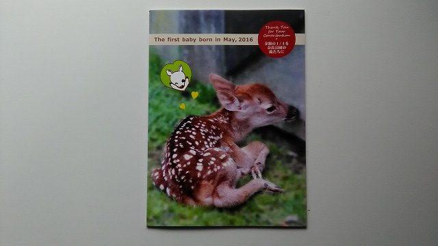 子鹿ノート