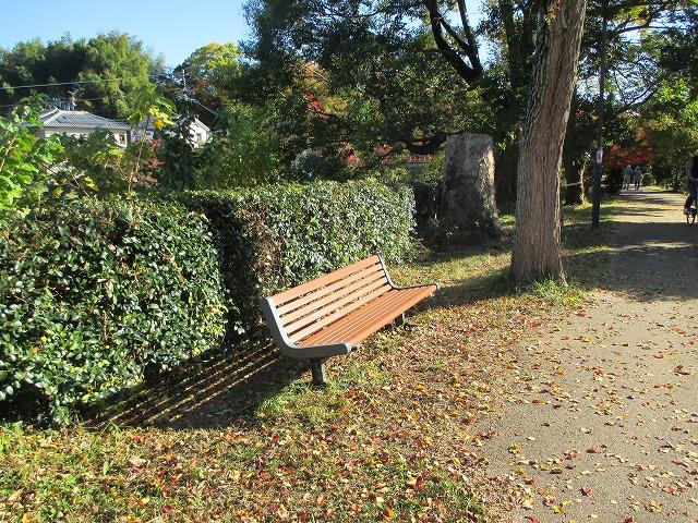 遊歩道内のベンチ
