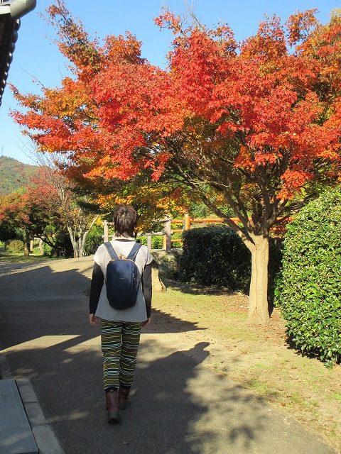 紅葉樹と後ろ姿の女性