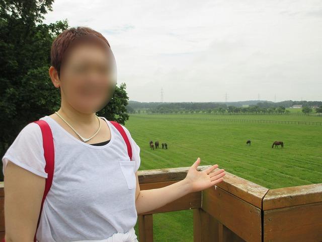 女性の後ろに馬