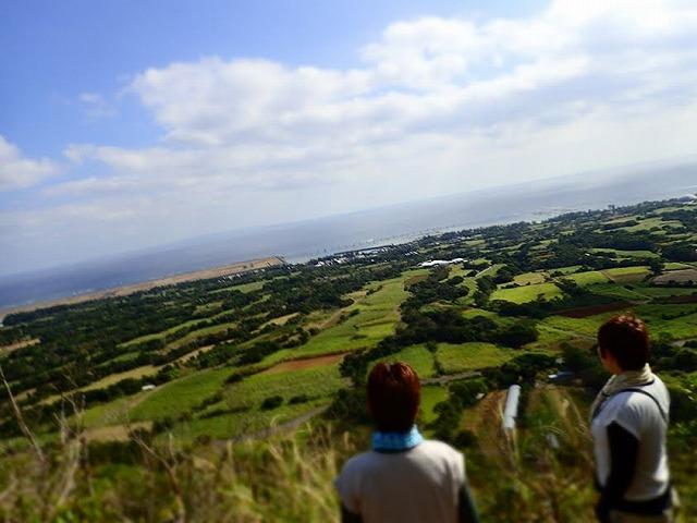 高台から見る海